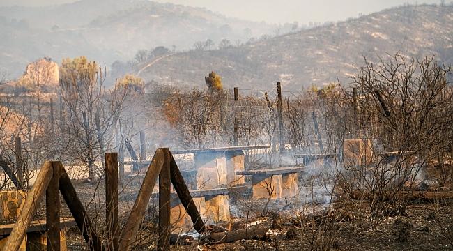 İspanya'da yangın sebebiyle 500 kişi tahliye edildi